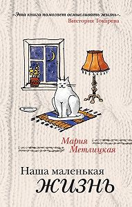 Мария Метлицкая -Наша маленькая жизнь (сборник)