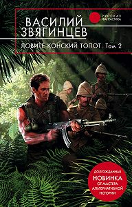 Василий Звягинцев - Ловите конский топот. Том 2. Кладоискатели