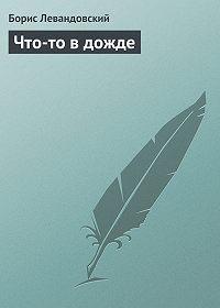 Борис Левандовский -Что-то в дожде