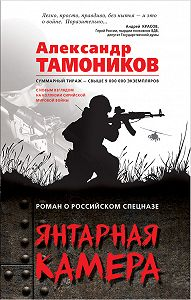 Александр Тамоников -Янтарная камера