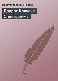 Неустановленный автор -Допрос Колчака. Стенограммы