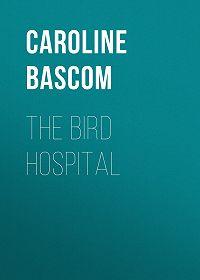 Caroline Bascom -The Bird Hospital