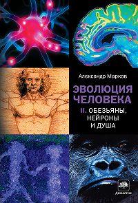 Александр Владимирович Марков -Обезьяны, нейроны и душа