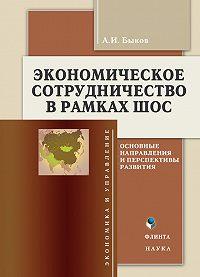 А. И. Быков - Экономическое сотрудничество в рамках ШОС. Основные направления и перспективы развития