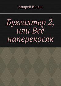 Андрей Ильин - Бухгалтер2, или Всё наперекосяк