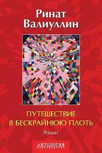 Ринат Валиуллин - Путешествие в бескрайнюю плоть