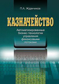 П. А. Жданчиков -Казначейство. Автоматизированные бизнес-технологии управления финансовыми потоками