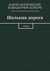 Андрей Днепровский-Безбашенный (A.DNEPR) -Шальная дорога. Стихи