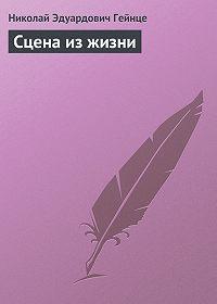 Николай Гейнце -Сцена из жизни
