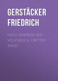 Friedrich Gerstäcker -Nach Amerika! Ein Volksbuch. Dritter Band