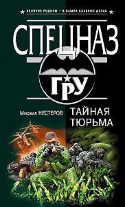 Михаил Нестеров - Тайная тюрьма