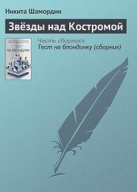 Никита Шамордин -Звёзды над Костромой