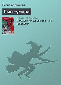 Елена Арсеньева -Сын тумана