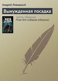 Андрей Ливадный -Вынужденная посадка