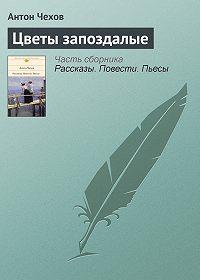 Антон Чехов - Цветы запоздалые