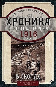 Евгений Анташкевич -Хроника одного полка. 1916 год. В окопах
