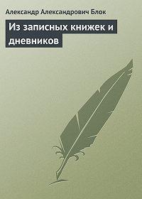 Александр Блок -Из записных книжек и дневников