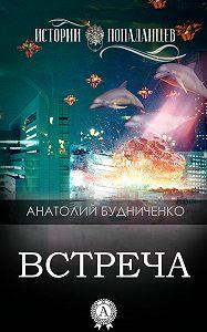 Анатолий Будниченко -Встреча