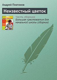 Андрей Платонов - Неизвестный цветок