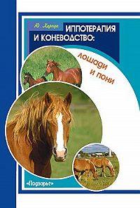 Юрий Харчук -Иппотерапия и коневодство. Лошади и пони