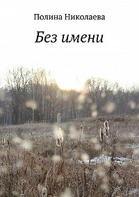 Полина Николаева - Без имени