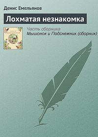 Денис Емельянов - Лохматая незнакомка