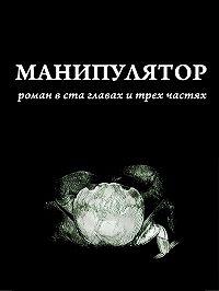 Дима Сандманн -Манипулятор. Глава 009