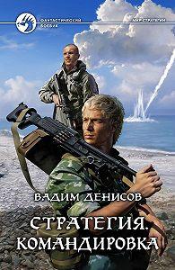 Вадим Денисов -Стратегия. Командировка