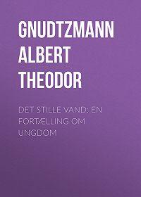 Albert Gnudtzmann -Det stille Vand: En Fortælling om Ungdom