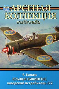 Роман Есиков - Крылья викингов: шведский истребитель J22