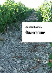 Андрей Козлов -Осмысление