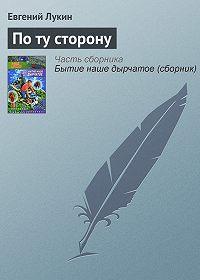 Евгений Лукин -По ту сторону
