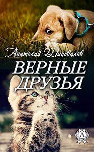 Анатолий Шаповалов -Верные друзья