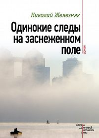 Николай Железняк -Одинокие следы на заснеженном поле