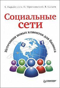 Николай Мрочковский, Андрей Парабеллум, Владимир Калаев - Социальные сети. Источники новых клиентов для бизнеса