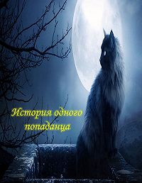 Валерий Андрианов -Я – некромант. Часть 1