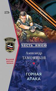 Александр Тамоников -Горная атака