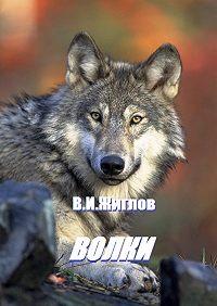 В. Жиглов -Волки