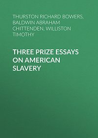 Timothy Williston -Three Prize Essays on American Slavery