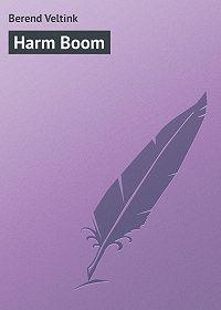 Berend Veltink -Harm Boom