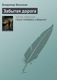 Владимир Васильев - Забытая дорога