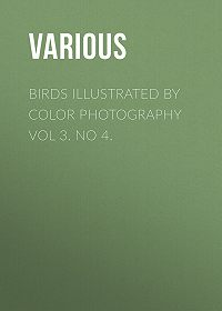 Various -Birds Illustrated by Color Photography Vol 3. No 4.
