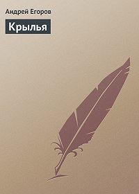 Андрей Егоров -Крылья