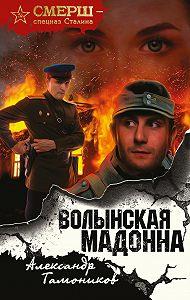 Александр Тамоников -Волынская мадонна