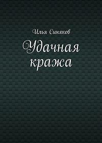 Илья Синяков -Удачная кража