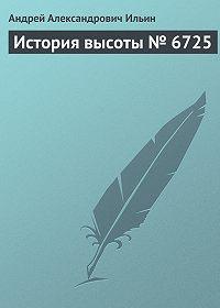 Андрей Ильин -История высоты № 6725