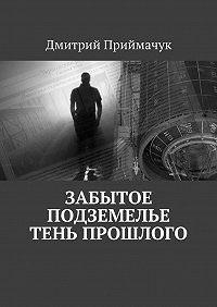 Дмитрий Приймачук - Забытое подземелье. Тень прошлого