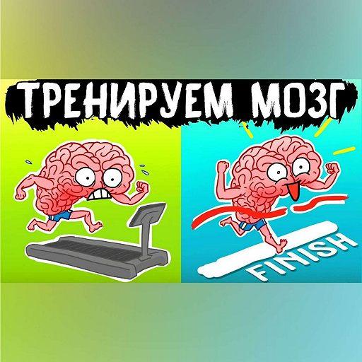 Саммари на книгу «Тренируем мозг. Тетрадь для развития памяти и интеллекта №1». Рюта Кавашима