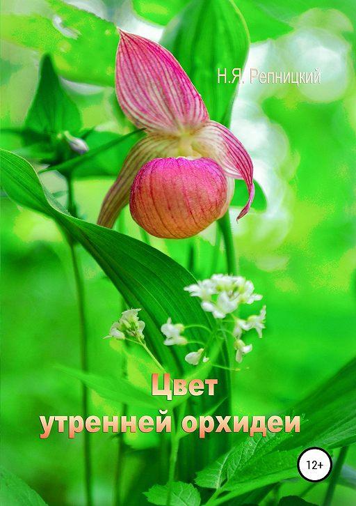 Цвет утренней орхидеи
