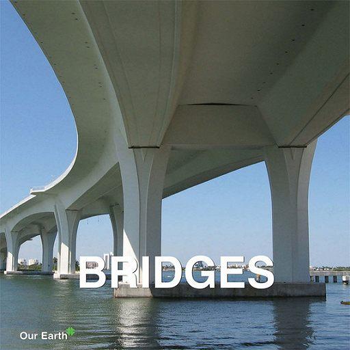 """Купить книгу """"Bridges"""""""